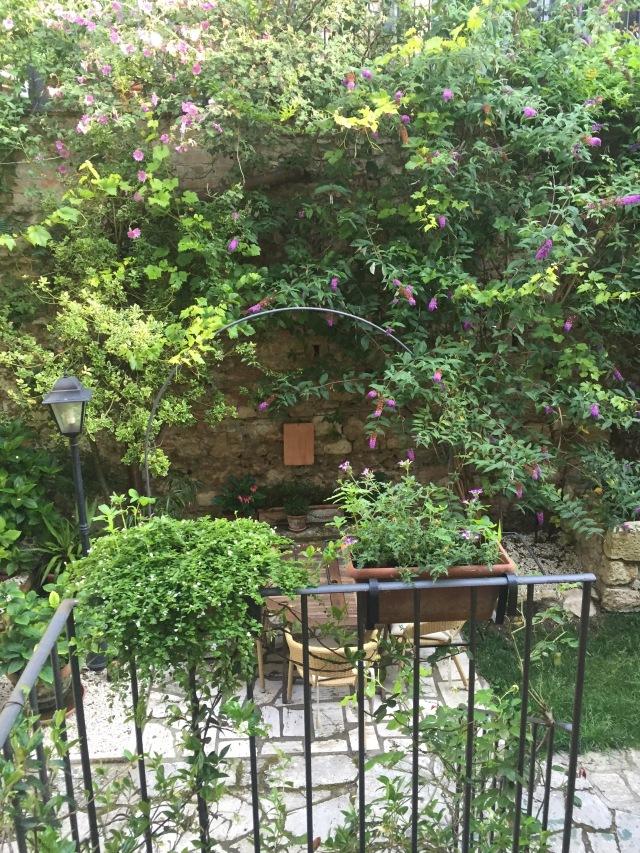Our terrace garden